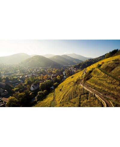 Domaine Zind Humbrecht Pinot Gris Grand Cru Rangen 2017